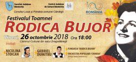 "Dambovita: Festivalul toamnei ""Rodica Bujor"""