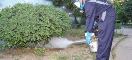Targoviste: Primaria municipiului instiinteaza cetatenii ca in perioada 25 – 30 iunie 2019 va avea loc actiunea dedezinsectie la sol pe domeniul public