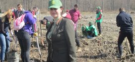 """Dambovita: Directia Silvica Judeteana a  marcat  """"Luna Plantarii Arborilor"""" printr-o actiune de plantare puieti in raza Ocolului Silvic Bucsani"""