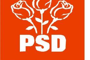 Congresul Extraordinar al Partidului Social Democrat face cateva precizari despre lista de delegati